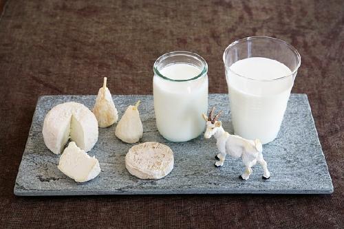 Bí quyết làm đẹp bằng sữa dê tại nhà cực kỳ đơn giản
