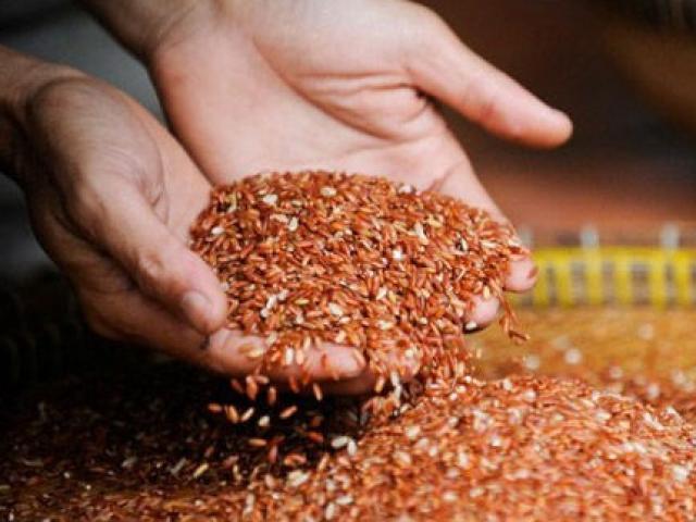 Gạo lứt có phải thực phẩm chữa được bệnh ung thư không?